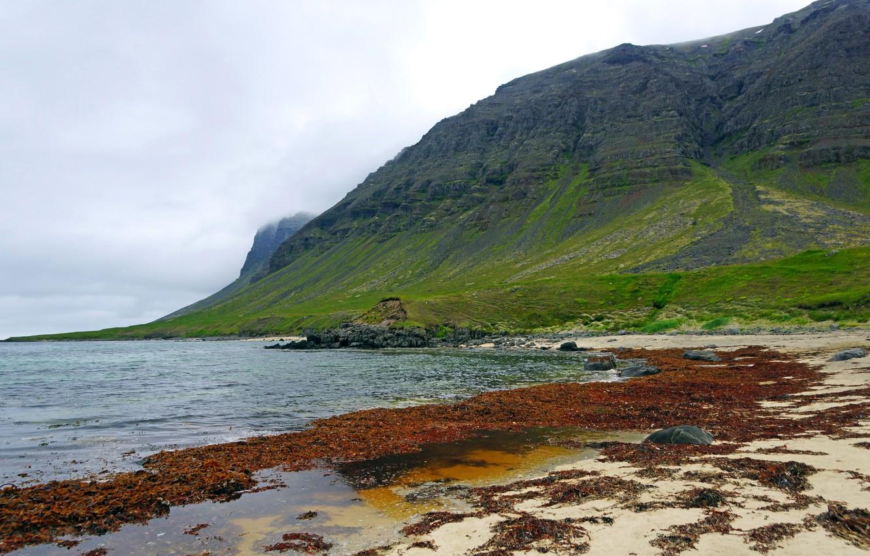 Фото обои море, облака, камни, пасмурно, скалы, побережье, Исландия, Westfjords