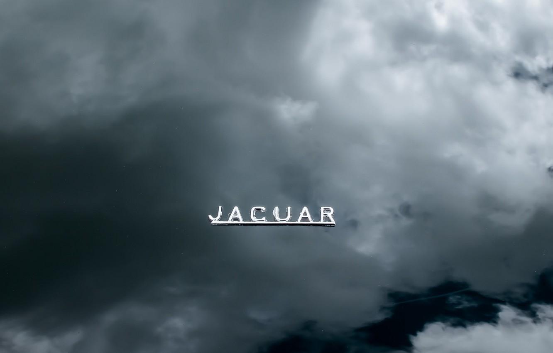 Фото обои машина, знак, капот, jaguar