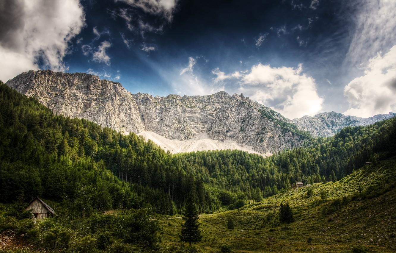 Фото обои лес, небо, облака, деревья, горы, Австрия, деревянный, домик, синее, Austria