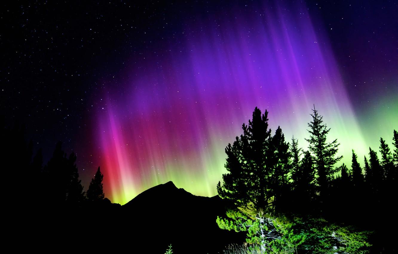 Фото обои звезды, деревья, горы, ночь, сияние, силуэт