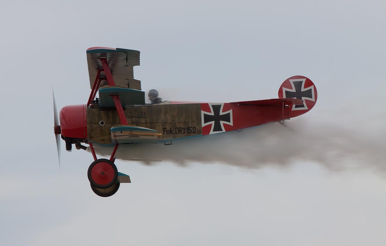 Обои сил, триплан, Fokker dr.1, военно-воздушных, истребитель. Авиация foto 7