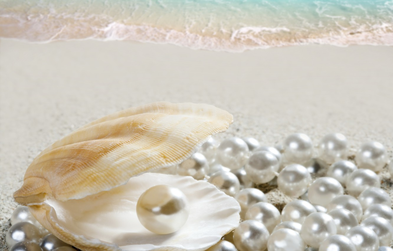 Фото обои песок, море, пляж, ракушка, beach, sea, sand, shore, seashell, жемчужина, perl