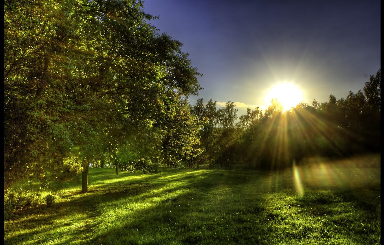 луч солнца тебе картинка рельсы, шпалы, шпалы