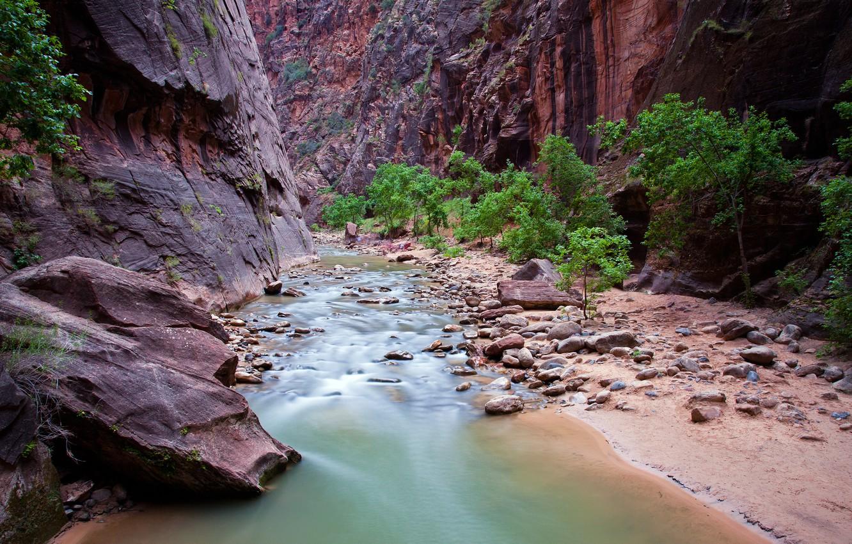 Обои Zion national park, сша, ручей, водопад, юта, скалы. Природа foto 19