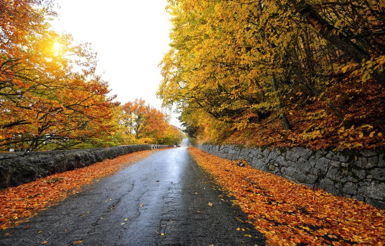 так как фотографии осень дороги сами того