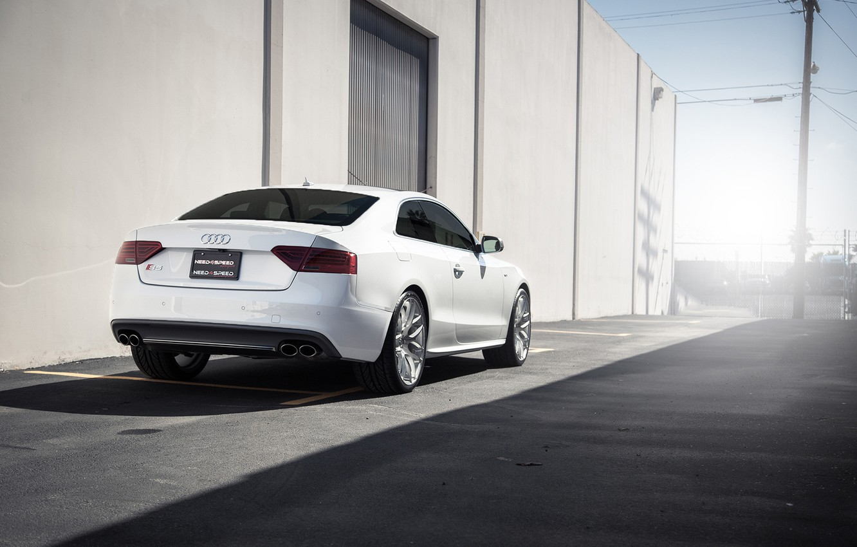 Фото обои Audi, white