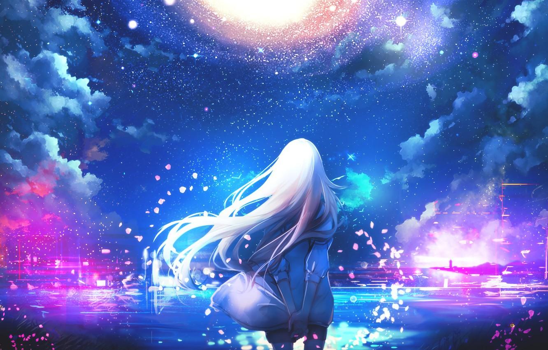 Фото обои небо, девушка, звезды, волосы, спина, аниме, лепестки, арт