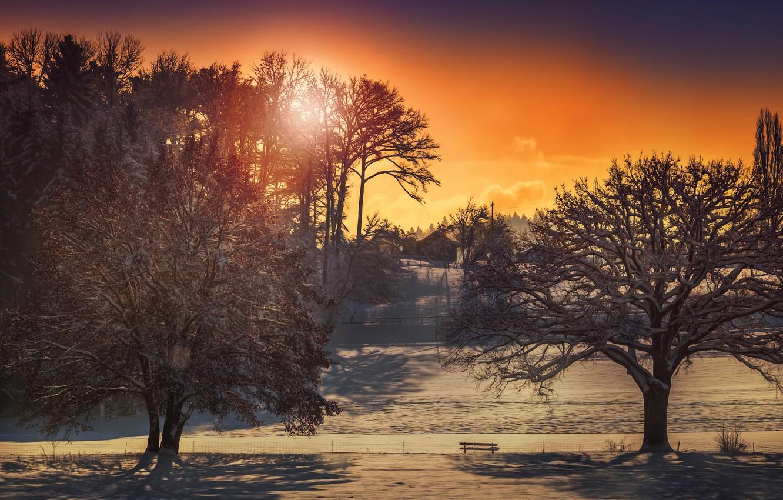 Фото обои зима, солнце, деревья, дома, обработка