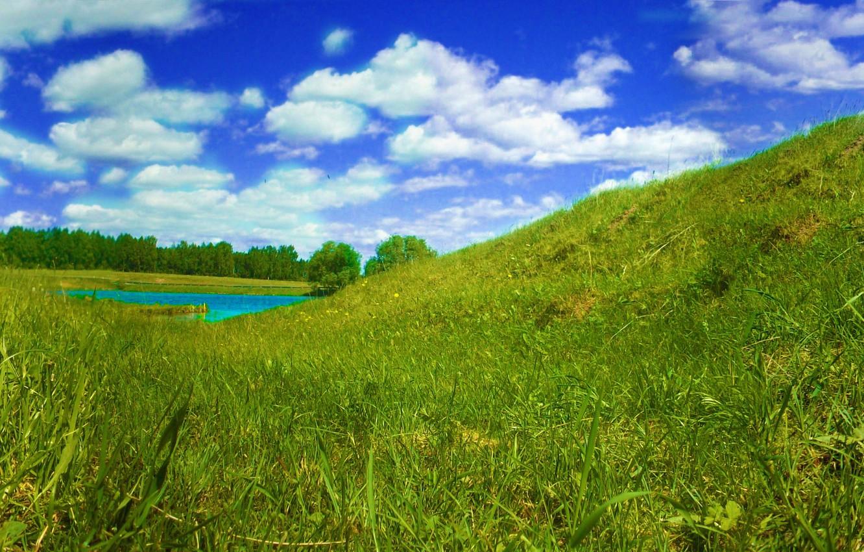 Фото обои Небо, Трава, Бабочка, Река, Панорама, Лето, Птицы
