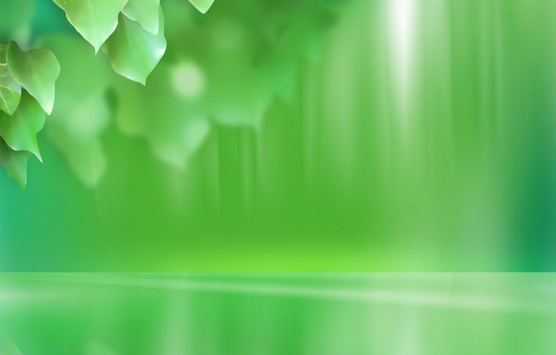 Фото обои листья, зеленый, минимализм