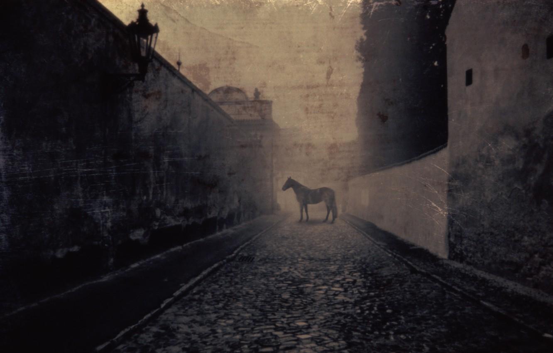 Фото обои улица, лошадь, Horse, фонарь. старина, Cobbled Street