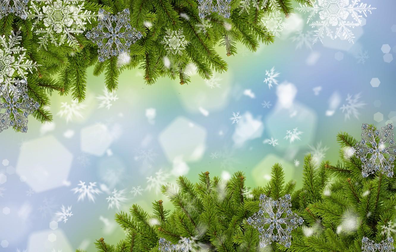 Фото обои снег, снежинки, ветки, ёлка