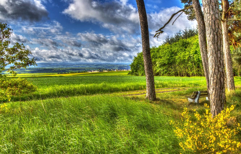 Красивые картинки природа лето