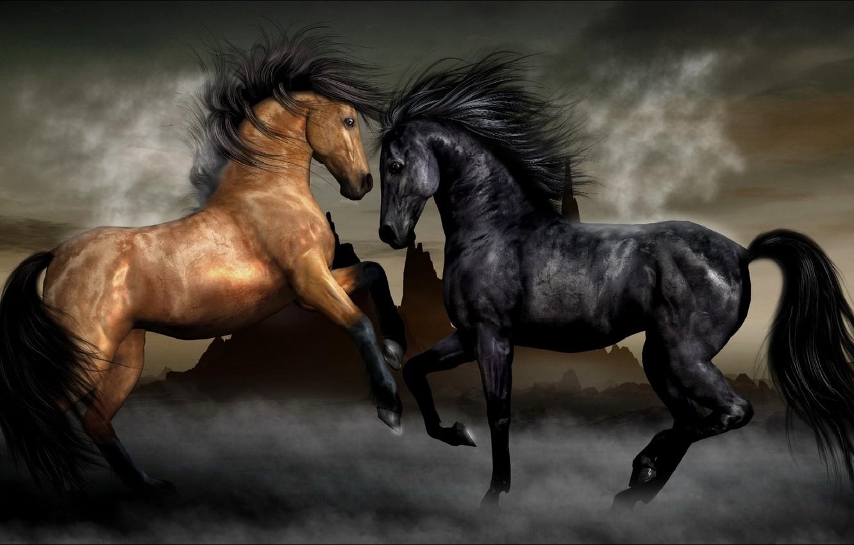 Фото обои туман, кони, лошади, пара