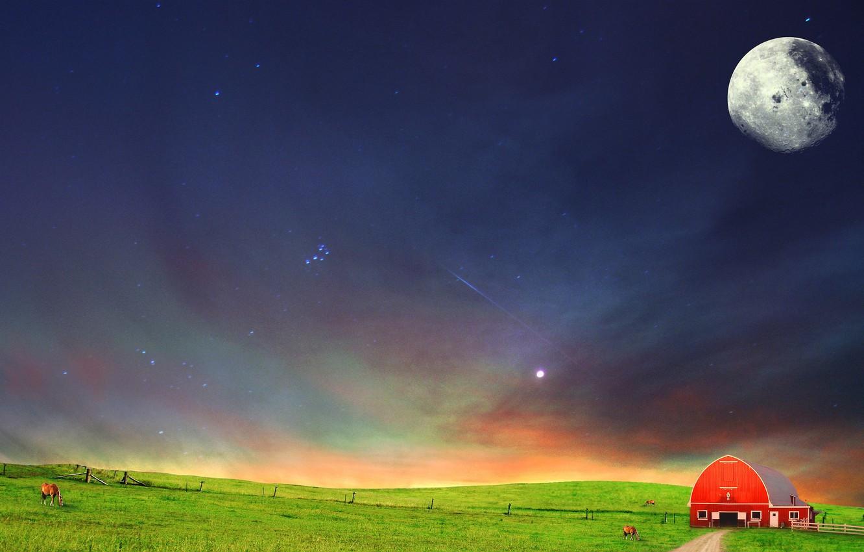 Фото обои поле, ночь, степь