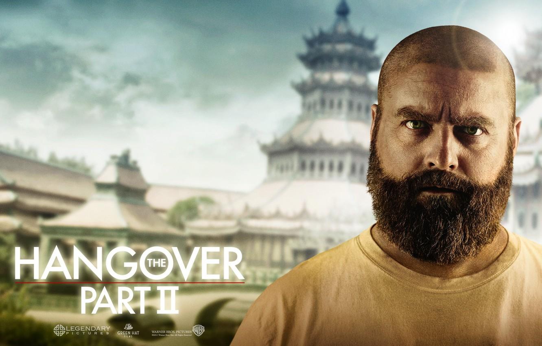 Обои bradley cooper, мальчишник 2: из вегаса в бангкок, The hangover part 2. Фильмы foto 14