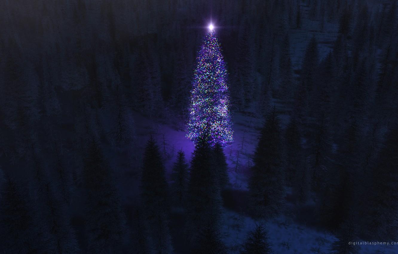 Фото обои лес, ночь, огни, елка