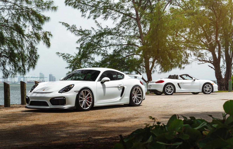 Фото обои car, Porsche, White, roadster, William Stern, cayman GT4
