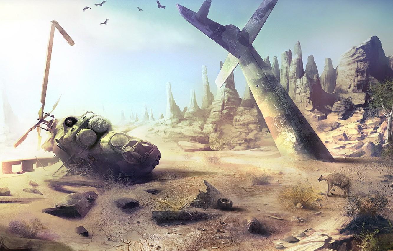 Фото обои камни, крушение, вертолет, гиена