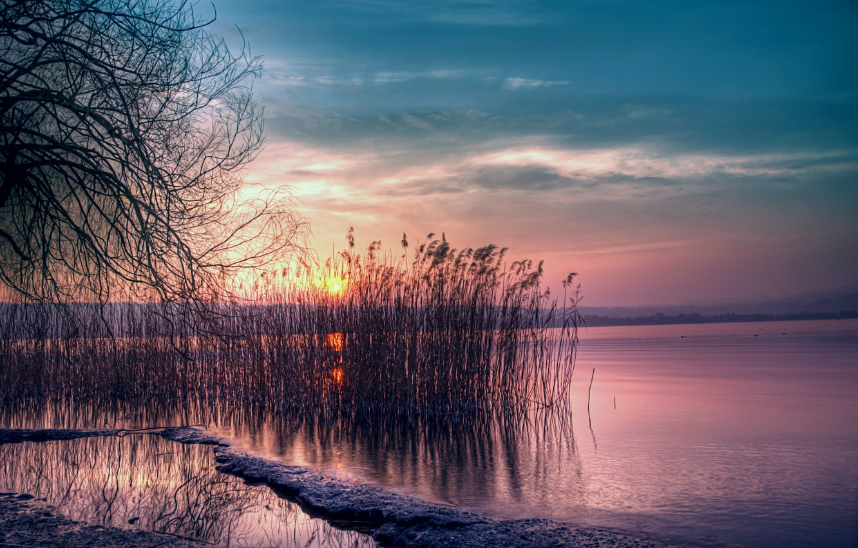 Фото обои небо, солнце, закат, озеро, камыши, розовый, берег, тишина, Вечер, сумерки, синее