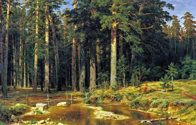 Фото обои лес, картина, Шишкин, Корабельный