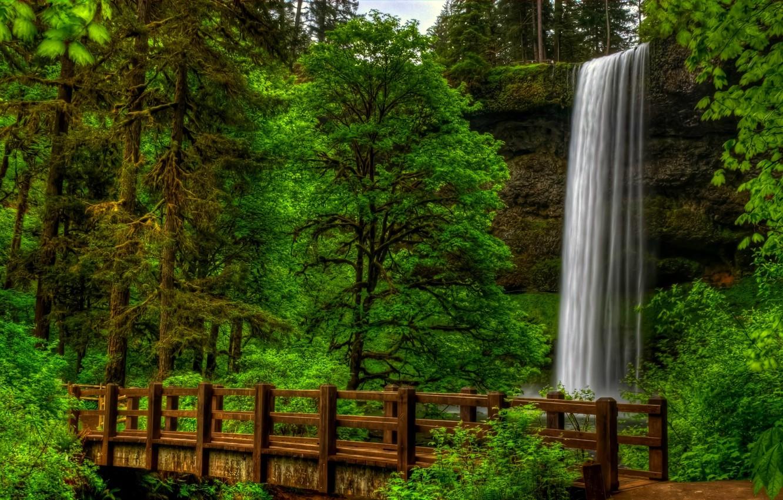 Фото обои лес, вода, деревья, пейзаж, мост, природа, парк, вид, водопад, forest, trees, landscape, nature, bridge, water, …