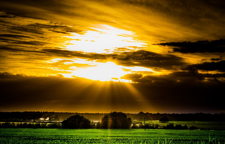 Фото обои поле, небо, пейзаж, закат