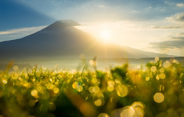Фото обои небо, трава, солнце, облака, лучи, свет, роса, блики, тепло, гора, утро, боке