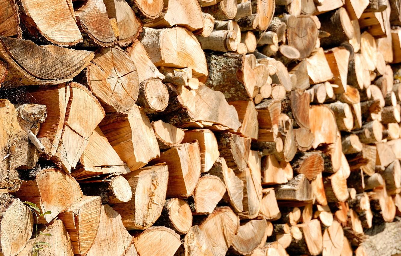 Фото обои макро, фон, дрова