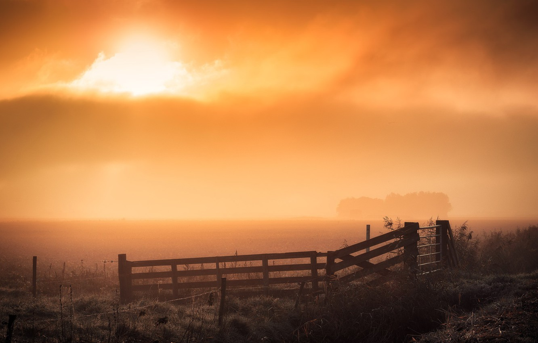 Фото обои поле, ночь, туман, забор
