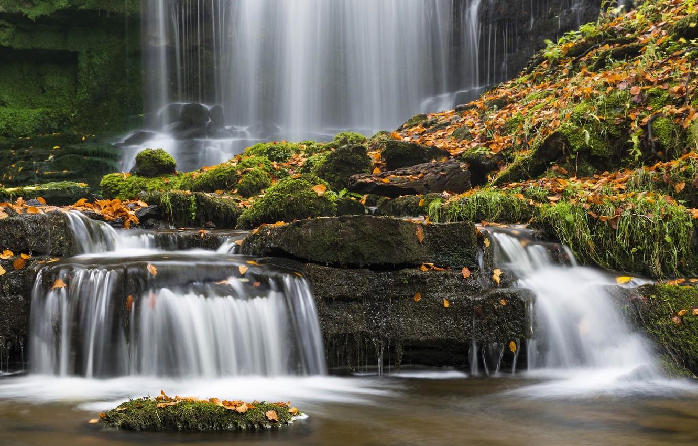 Фото обои осень, листья, камни, Англия, водопад, мох, England, Северный Йоркшир, North Yorkshire, Йоркшир-Дейлс, Yorkshire Dales National …