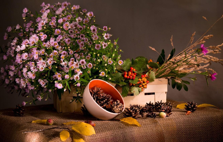 Фото обои трава, листья, цветы, ягоды, ветка, ткань, миска, натюрморт, шишки, мешковина, калина, короб