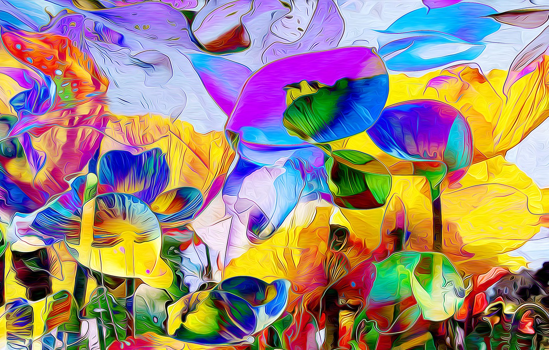 Обои луг, цветы. Абстракции foto 14