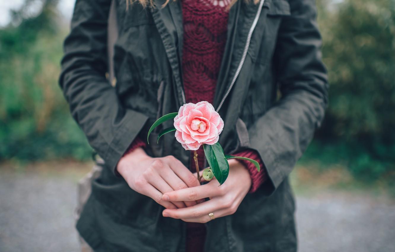 Цветок в руке мужчины картинки