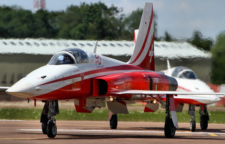 Обои истребители, «тайгер» ii, многоцелевые, F-5e, tiger ii. Авиация foto 10