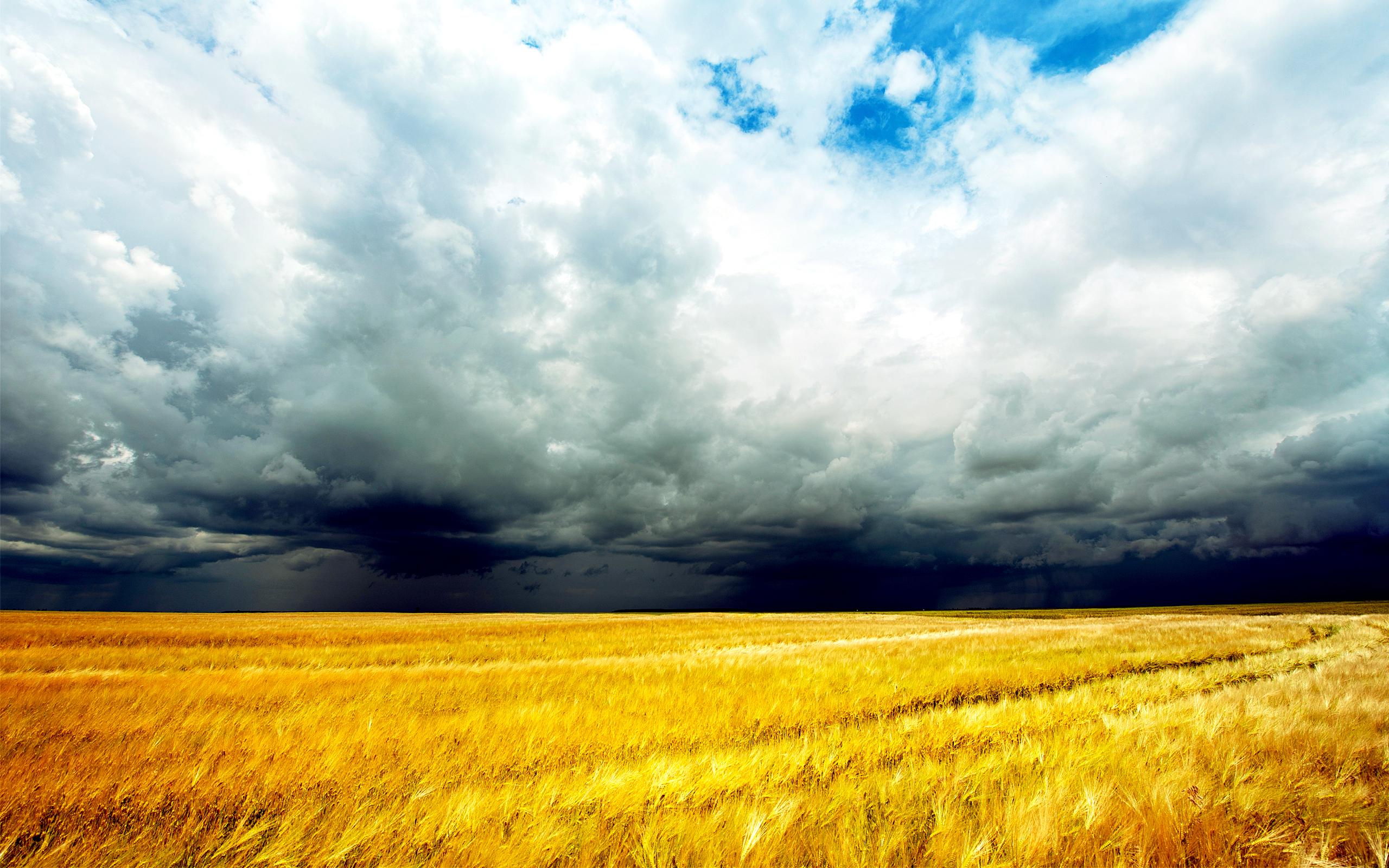 Скачать Бесплатно Обои Погоду