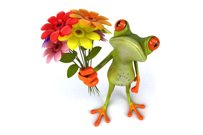 Букет цветов смешная картинка