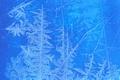 Картинка стекло, холод, окно, зима, иней, узор