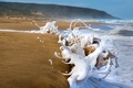 Картинка море, волны, берег, песок, пляж, пена, брызги