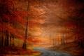 Картинка дорога, деревья, осень, природа
