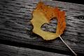 Картинка полено, древесина, бревно, сердце, листочек, листья, дерево, середечки, сердца, настроение, шурупы, гвозди, осень, сердечко, креатив, ...