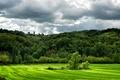Картинка тучи, Италия, деревья, Lugagnano Val dArda, зелень, поле, холмы, трава