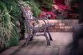 Картинка листья, скамейка, природа, забор, ограда, лавочка, лавка, кусты, скамья