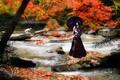 Картинка горная река, цапля, мост, Осень, девушка, азия.
