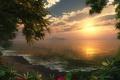 Картинка цветы, forest, деревья, берег, sea, море, волны, вода, Sunset, облака, солнце, небо, лес, закат