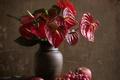 Картинка цветы, Red, фрукты, натюрморт, мужское счастье, композиция, антуриум