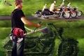 Картинка Трава, мотоциклы, козлы, газонокосилка