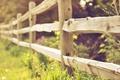 Картинка природа, забор, фокус, ограда, травы, боке