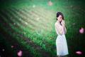 Картинка девушка, поле, азиатка