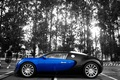 Картинка Bugatti, veyron, контраст, цвета